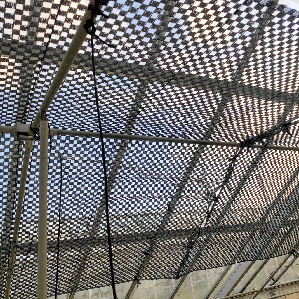 温室の遮光はむずかしい