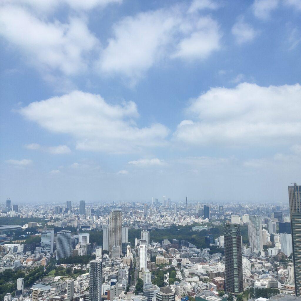 『KAWS TOKYO FIRST 』行ったよ