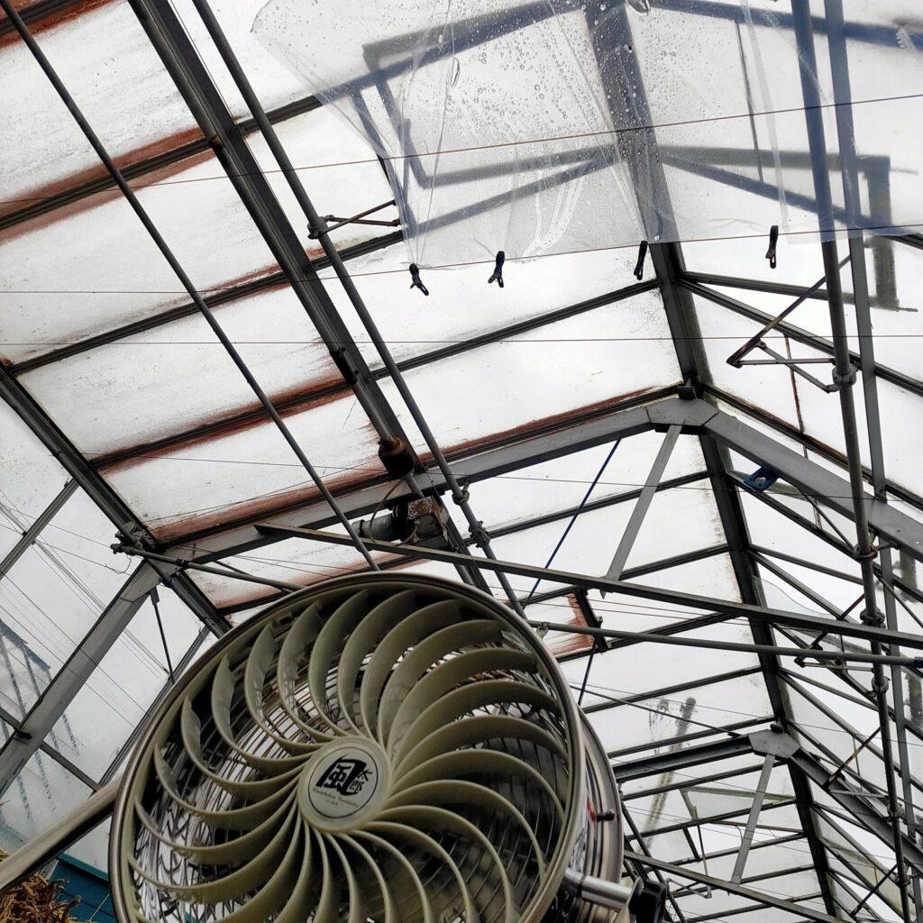 永久機関こうちく 簡易式ソーラー発電設備を温室に入れてみた
